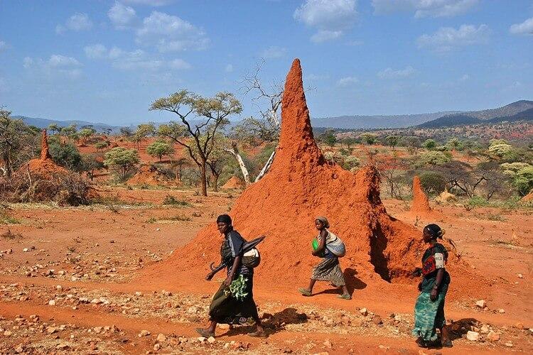 museo-castiglioni-salomone-termitai