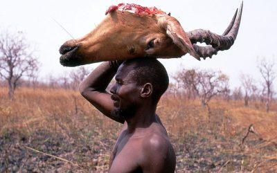 Fulbe Bororo: popolo di pastori