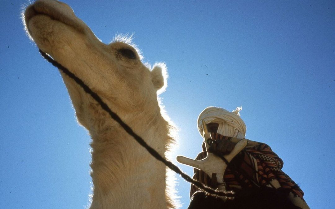 Tuaregh: gli uomini blu del deserto