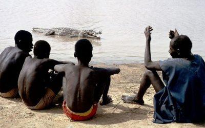 I coccodrilli sacri dei Mossi