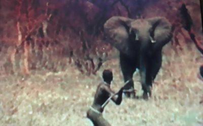 Caccia all'elefante di un gruppo Dinka